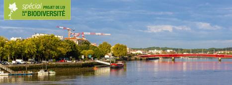 Loi biodiversité : les trames vertes et bleues renforcées dans le code de l'urbanisme | Biodiversité ordinaire et fonctionnelle en agriculture | Scoop.it