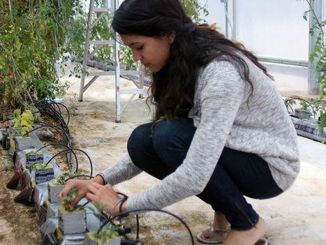 Students helping school farm grow | CALS in the News | Scoop.it