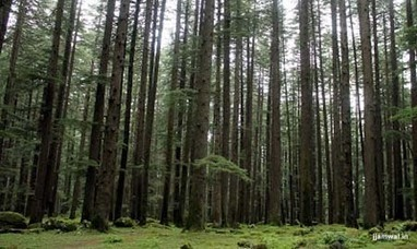 Manali tour package | Honeymoon Holiday Plans | Scoop.it