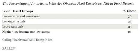 "Income, Not ""Food Deserts,"" More to Blame for U.S. Obesity 