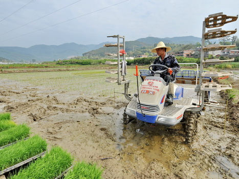 China Admits That One-Fifth Of Its Farmland Is Contaminated | Aquaponics~Aquaculture~Fish~Food | Scoop.it