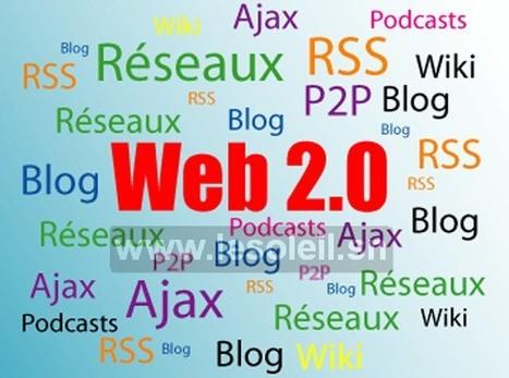 Technologies de l'information : Des acteurs du développement agricole et rural à l'école du Web 2.0 | InnovagroEc | Scoop.it