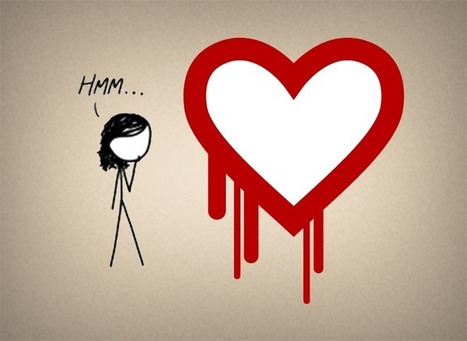 Understanding the Heartbleed Bug | Information Technology Visual Content | Scoop.it