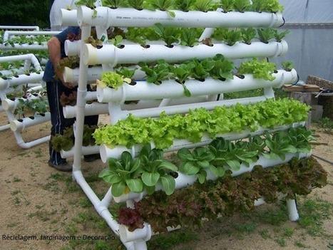 Guía para hacer tu propio huerto escolar ecológico y muchas ideas en imágenes -Orientacion Andujar | Educacion, ecologia y TIC | Scoop.it