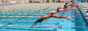 (EN) - Swimming vocabulary | deanza.edu | Glossarissimo! | Scoop.it
