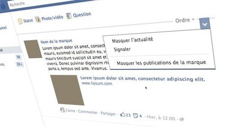 Découvrez combien d'utilisateurs de Facebook ont masqué les publications de votre page | Kriisiis.fr - Outils, Conseils et Actualité Social Media | Réseaux & Médias Sociaux | Scoop.it