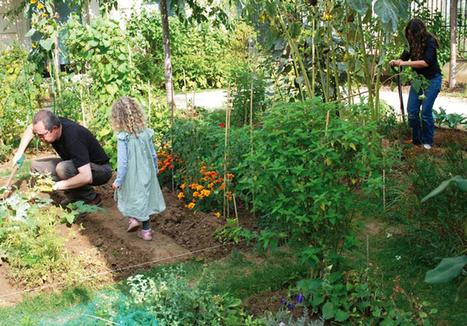 Jardins collectifs - Jardins de France | agriculture urbaine | Scoop.it