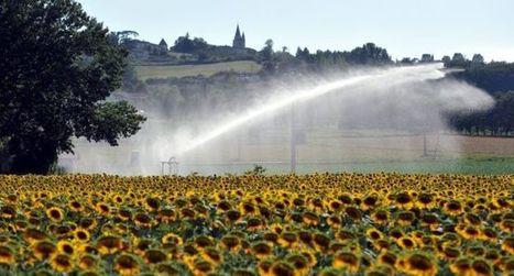 Irrigation : que d'eau, que d'eau | Gestion des services aux usagers | Scoop.it