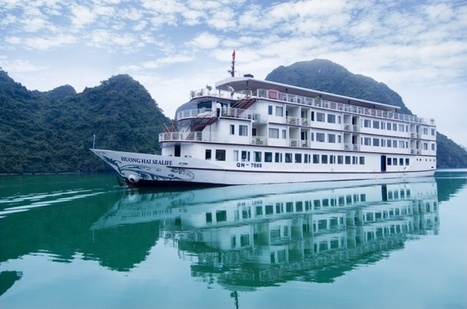 Huong Hai Sealife Cruise Halong Bay - Best Halong Bay Cruises | Best Halong cruises | Scoop.it
