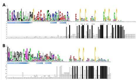 Ph.D. thesis | Découverte et caractérisation des petites protéines sécrétées chez les rouilles foliaires du peuplier (Melampsora spp.) | My papers | Scoop.it