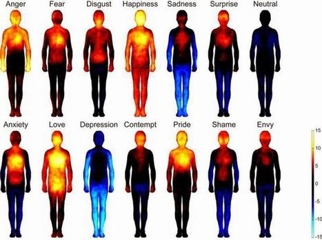 Así se distribuyen las emociones en el cuerpo humano | Era del conocimiento | Scoop.it