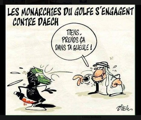 La lutte contre Daech s'organise | Epic pics | Scoop.it
