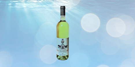 Le Marche Wine in US | Saladini Pilastri Falerio: Wine of the week | Wines and People | Scoop.it