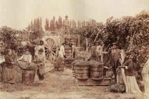 Great Wine Capitals - El portal de Mendoza | Great Wine Capitals Global Network | Scoop.it
