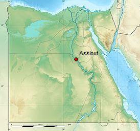 Égypte : flambée de dengue   EntomoNews   Scoop.it