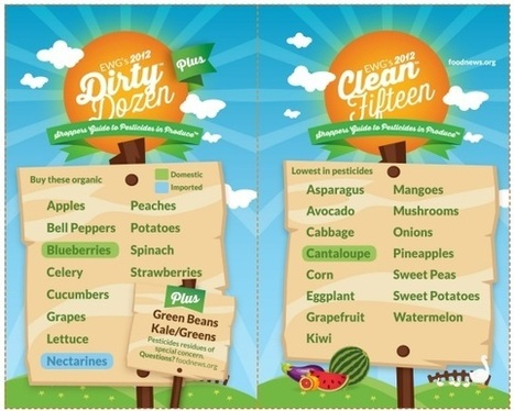 2012 Shopper's Guide to Pesticides- The Dirty Dozen & Clean 15 | Health, beauty and skincare | Scoop.it