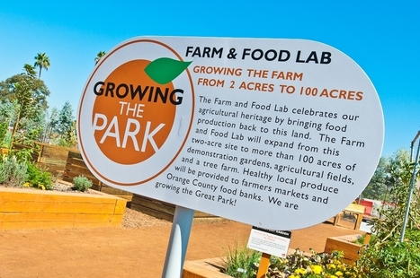 From Parking Lot to Paradise - the Revenge of Urban Agriculture | Yellow Boat Social Entrepreneurism | Scoop.it