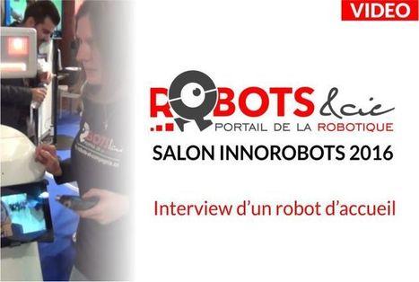 Des robots au service du tourisme: Le R-tourisme est en marche | Post-Sapiens, les êtres technologiques | Scoop.it