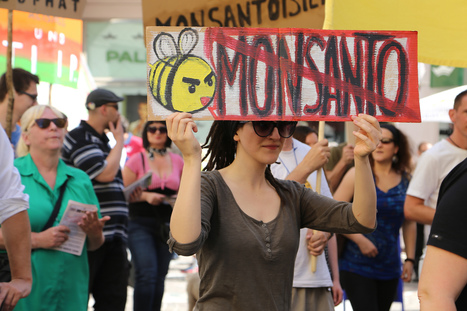 #Evil #Monsanto Admits There's a Whole Department Dedicated to Discrediting Anti-#GMO Experts #health | Messenger for mother Earth | Scoop.it