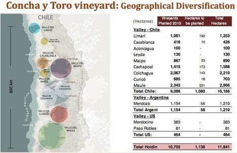 Concha y Toro vineyard: Geographical Diversification | Autour du vin | Scoop.it