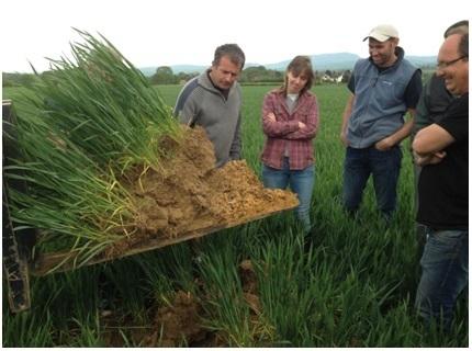 La restauration de la fertilité des sols – organique, porosité, acidité – est un chantier de longue haleine ! rappelleChristian Barnéoud, pédologue | Chimie verte et agroécologie | Scoop.it