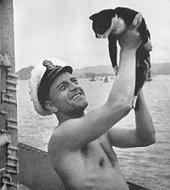 Simon: El gato que ganó la medalla Dickin | Amigos Peludines | Leishmaniosis | Scoop.it