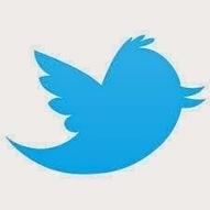 Twitter Newbie No More | Kindergarten | Scoop.it