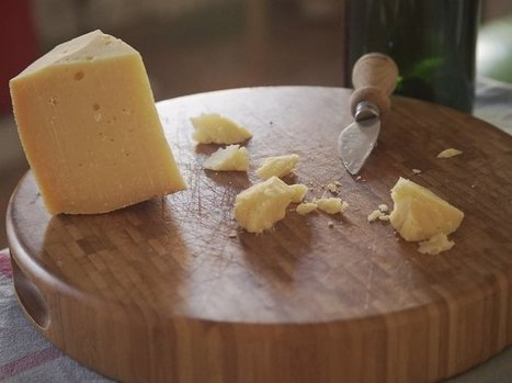 Italian Cheese Lovers Find Their Bovine Match Through 'Adopt A Cow'   Italia Mia   Scoop.it