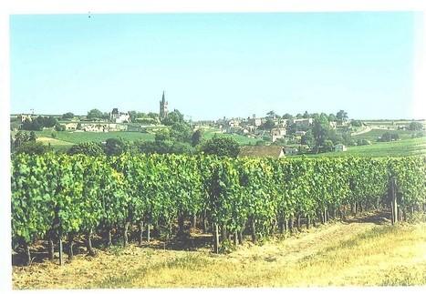 Pomerol, Saint-Emilion, Côtes De Castillon : Flash Vendanges | My wine, heritage and communication press review | Scoop.it