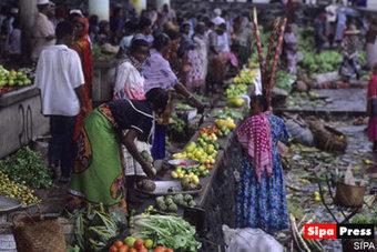 60 millions d'euros pour l'agriculture mahoraise - Economie   L'actualité de Mayotte   Scoop.it