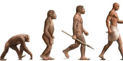 """""""La prochaine grande espèce qui disparaîtra? Probablement nous!""""   Post-Sapiens, les êtres technologiques   Scoop.it"""