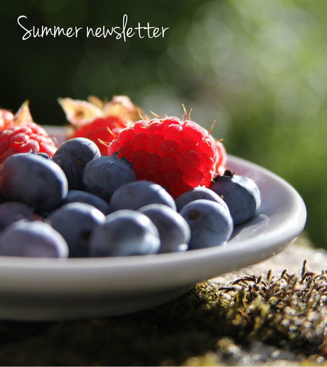 Summer Newsletter 2016 | The e-Assessment Association | Digital school test | Scoop.it