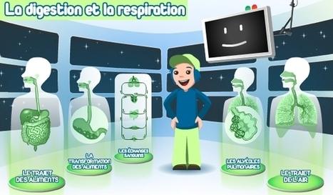 Le corps humain - activités pour TBI | Moisson sur la toile: sélection à partager! | Scoop.it