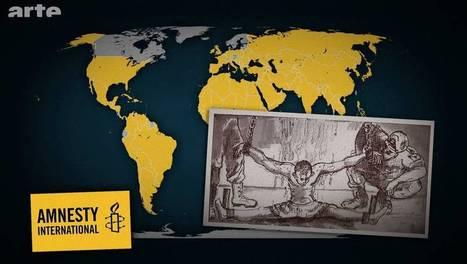DDC: La torture en 2014   16s3d: Bestioles, opinions & pétitions   Scoop.it