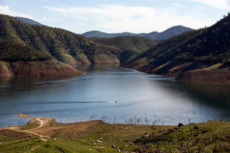 As California Drought Enters 4th Year, Conservation Efforts and Worries Increase | Fish Habitat | Scoop.it