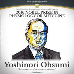 Congratulations to Yoshinori Ohsumi | Plant Biology Teaching Resources (Higher Education) | Scoop.it