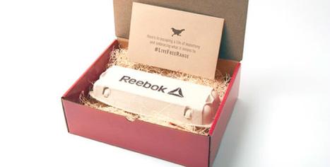 Insolite: le poulet, nouveau symbole de la marque… Reebok! - Agro Media | Actualité de l'Industrie Agroalimentaire | agro-media.fr | Scoop.it