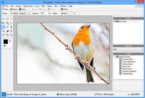 Fotografix, un completo editor de imágenes portable y gratuito para Windows | Recull diari | Scoop.it