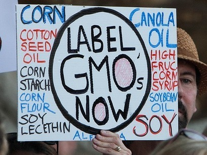 US food industry: labelling laws are 'unconstitutional' | GMO GM Articles Research Links | Scoop.it