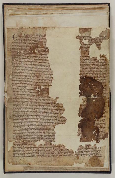 Original Copy of the Magna Carta Found in Forgotten Old Scrapbook | Hamiter Current Events | Scoop.it