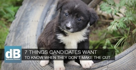 What Candidates Want Staffing Agency Recruiters to Tell Them | Small Business Marketing Ideas | Scoop.it