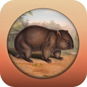 Field Guide to South Australian Fauna | mrpbps iDevices | Scoop.it