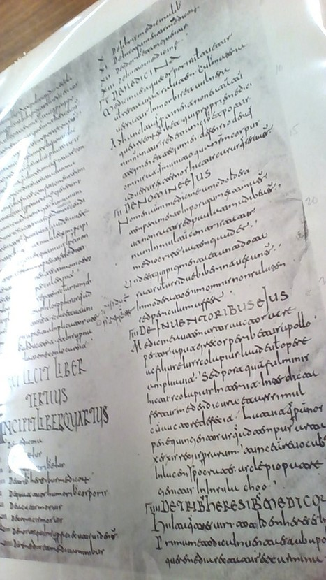 Using the catalog of Visigothic script manuscripts: problems and solutions   Medieval Manuscripts   Medieval Palaeography   Scoop.it