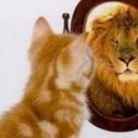 Volonté de maigrir ? Prenez conscience de votre véritable valeur et prenez le chemin du succès! | Scienceosport | Scoop.it