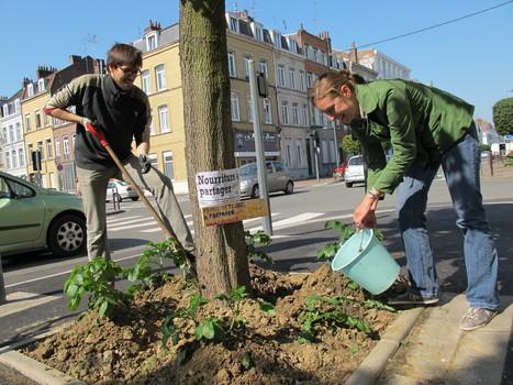 Une « guérilla potagère » dans les rues de Lille | Le BONHEUR comme indice d'épanouissement social et économique. | Scoop.it
