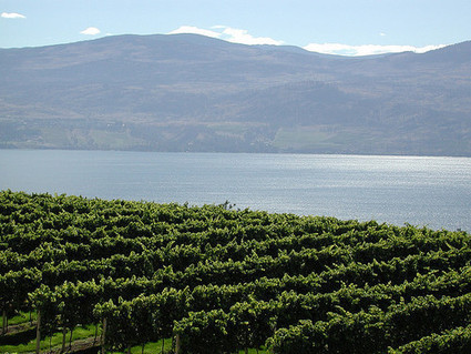 Top 10 Wine Destinations Around the World | Vitabella Wine Daily Gossip | Scoop.it