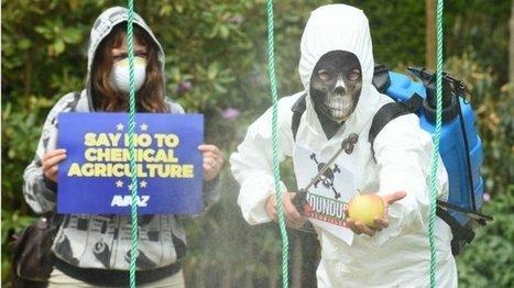 Environnement : les conclusions divergentes des études sur le glyphosate - France 24 | Nature to Share | Scoop.it