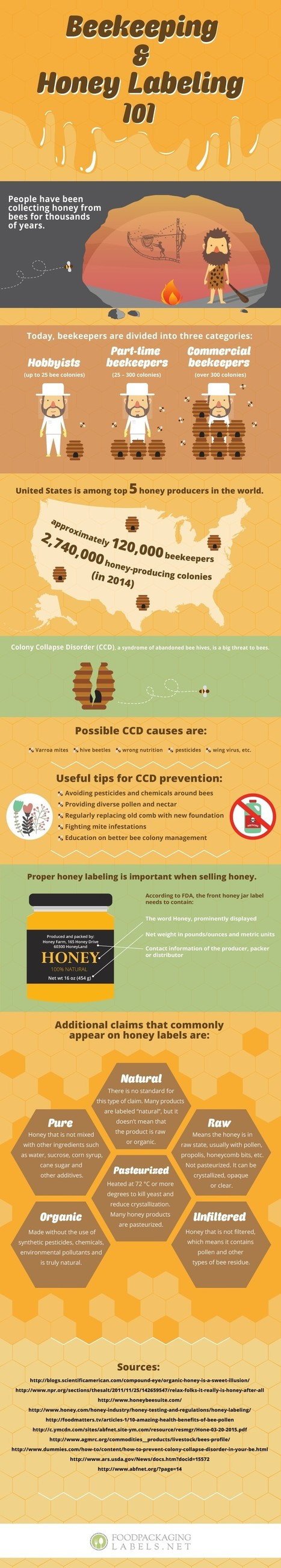 Beekeeping & Honey Labelling 101 - Everything about it | All Infographics | Scoop.it