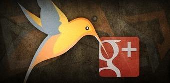 Understanding Google Hummingbird Algorithm Update By Kuliko.ca | Semantic Search | Scoop.it