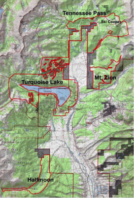 Massive Colorado logging project threatens lynx   GarryRogers Biosphere News   Scoop.it